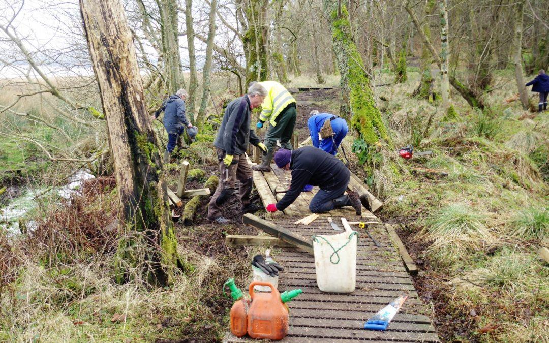 February 2018: BCT Volunteers repair the boardwalk through Suidhe Wood