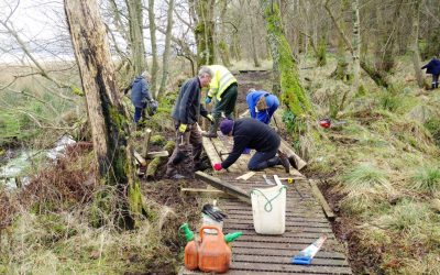 February 2018: BCT Volunteers repair the boardwalk through Suidhe Wood